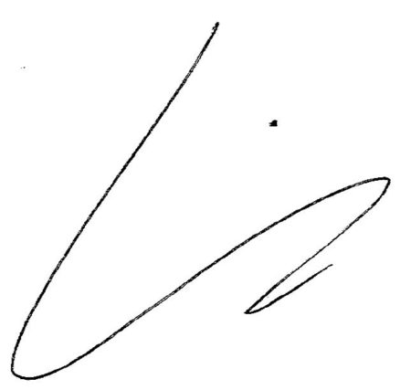 Kimm hamm signature
